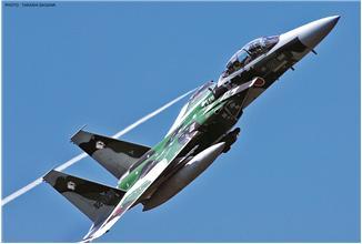 Учебно-тренировочный истребитель F-15DJ EAGLE