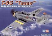 Учебный самолет T-6G Texan