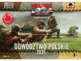 Польские офицеры в касках