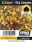 Листья A-MIG-8405: Сухие, лайм